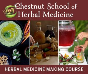 Chestnut School of Herbal Medicine link from pixiespocket.com