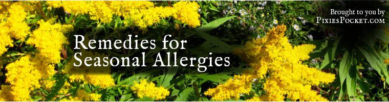 Seasonal Allergies Goldenrod Banner