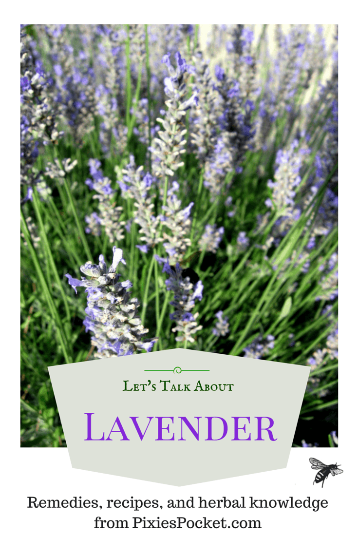 How to use Lavender - from pixiespocket.com