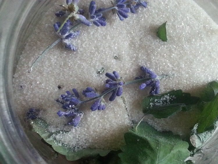 """Lavender and Lemon Balm infused sugar as seen on """"How to use lavender"""" from pixiespocket.com"""