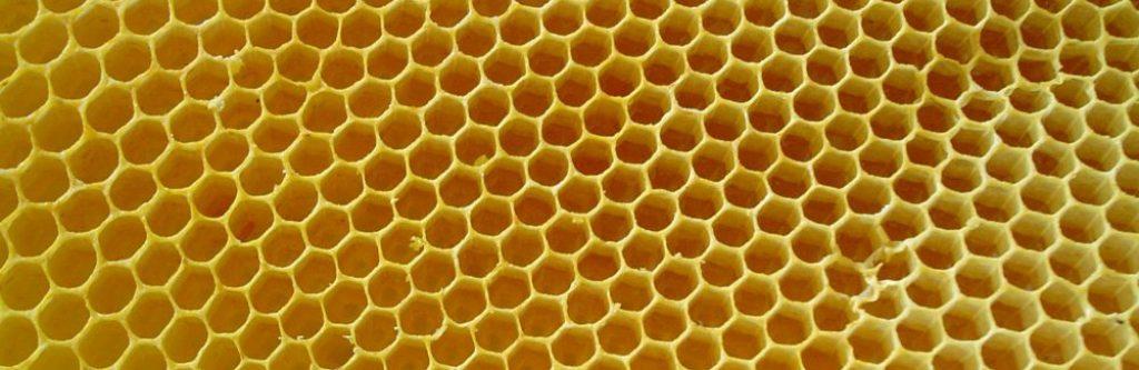 Honeycombs-rayons-de-miel-2