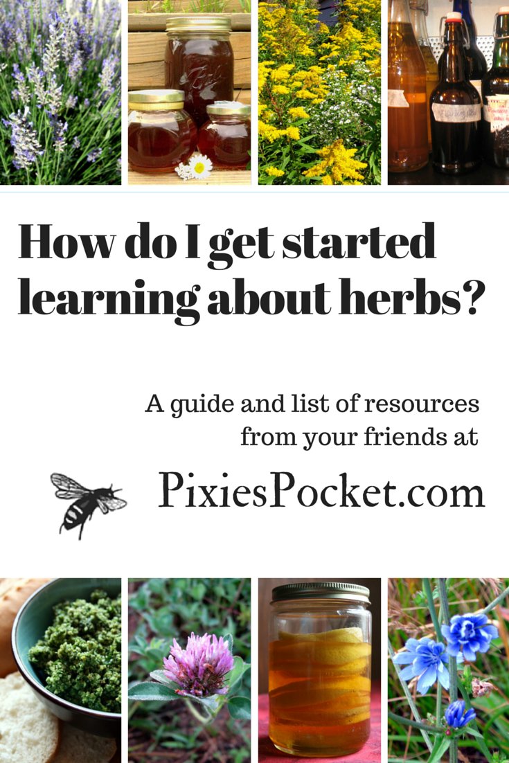 How do I learn about herbs? - a guide for those interested in learning about herbalism from pixiespocket.com