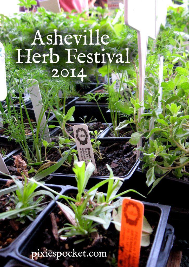 Asheville Herb Festival 2014
