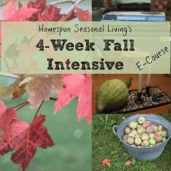 4-Week Fall Intensive E-Course from Homespun Seasonal Living