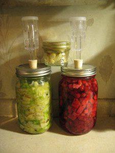 fermenting foods