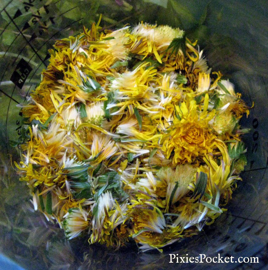 dandelion ginger wine or mead recipe on pixiespocket.com