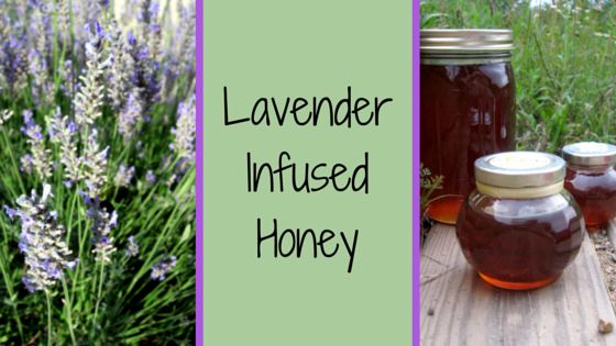 lavender infused honey 2
