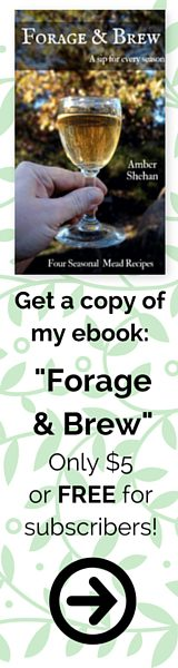 forage and brew ebook ad for pixiespocket.com