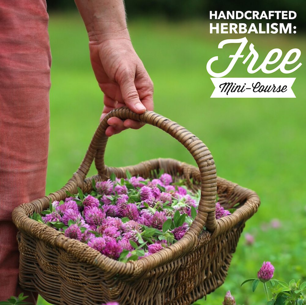Handcrafted Herbalism Free Mini-Course - as seen on pixiespocket.com