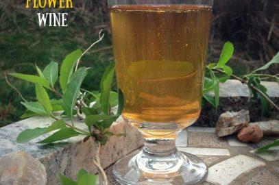 Honeysuckle Wine: One Gallon Recipe