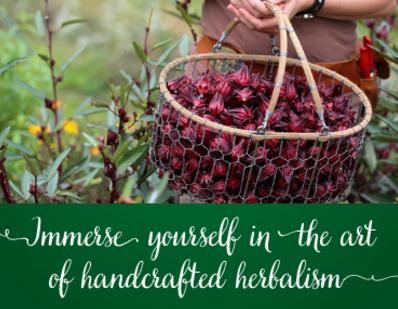 Herbal Education Opportunities!
