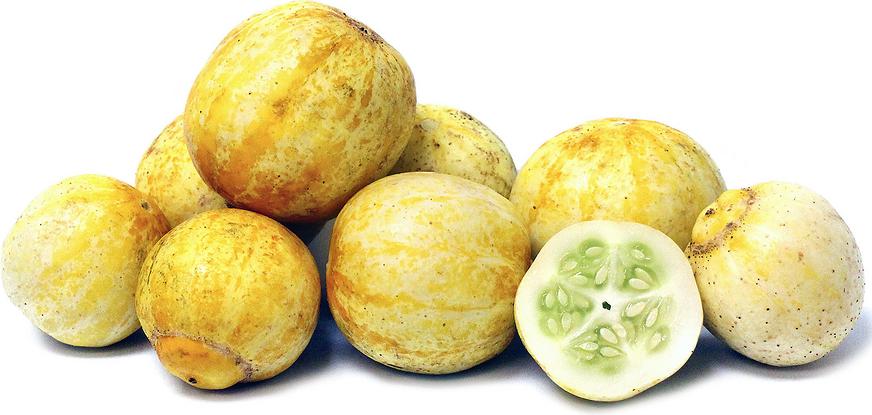 Lemon Cucumber Brined Pickle Recipe as seen on pixiespocket.com