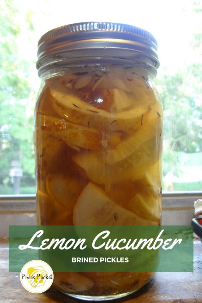 Lemon Cucumber Brined Pickles by pixiespocket.com