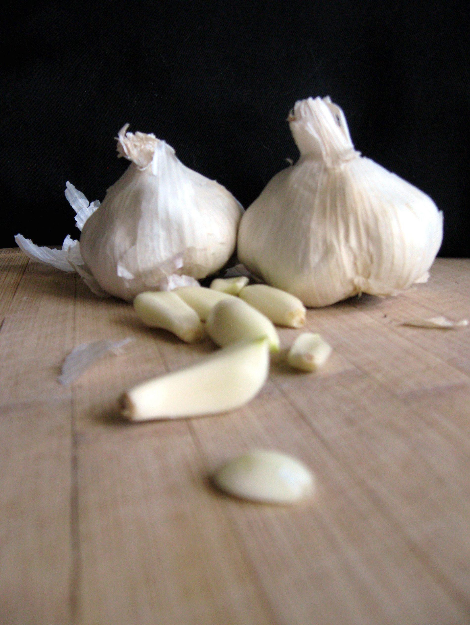 garlic-fullsize