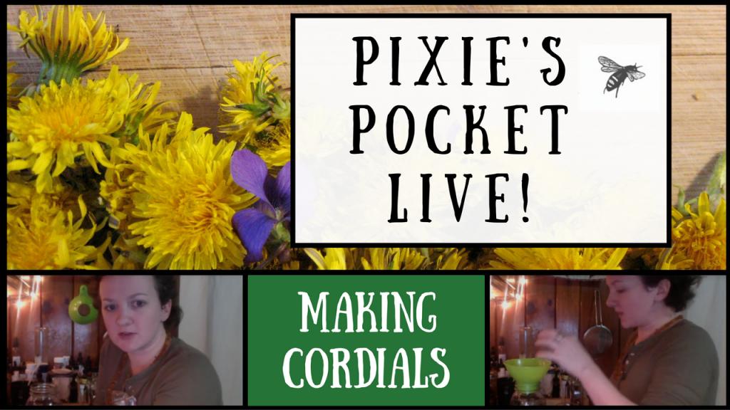 pixies-pocket-live