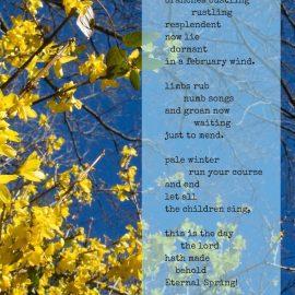 Art & Poetry