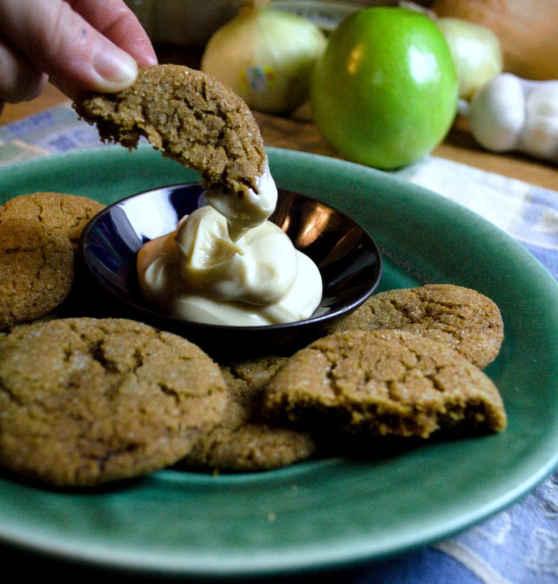 Bacon Fat Gingersnaps [and Honey Cream Cheese Dip] from Pixiespocket.com - a rich, delicious cookie with a smoky twist! Beautiful when paired with the heavenly honey cream cheese dip.