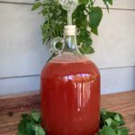 Strawberry and Lemon Balm Mead from Amber Shehan on Pixiespocket.com