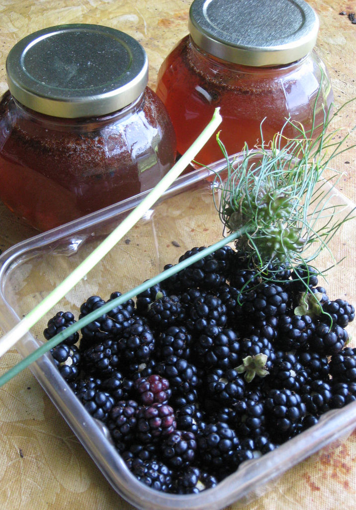 RECIPE BOX: ONE GALLON OF BLACKBERRY MEAD - pixiespocket.com