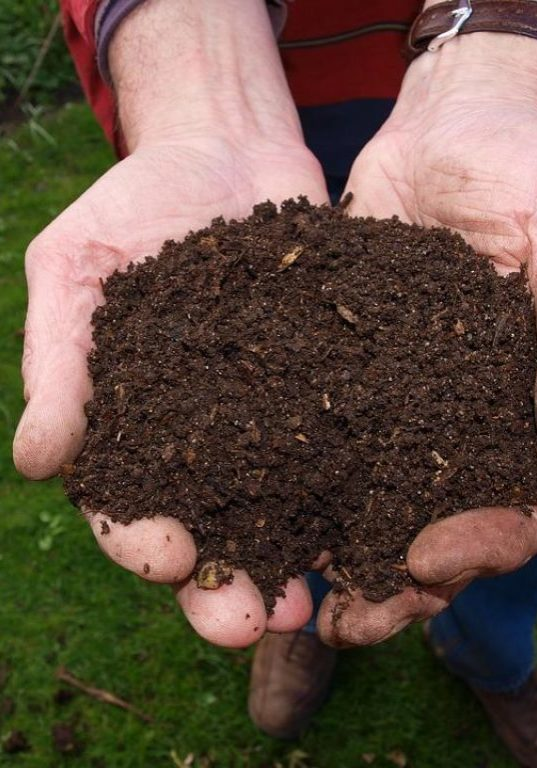 Make compost for your garden, it's easier than you think! Making compost for your garden will make sure that you have everything you need for healthy crops. You'll need a mixture of 50/50 materials rich in nitrogen and carbon. Learn more about the basics of composting in this Pixie's Pocket guest post by Craig Holland.