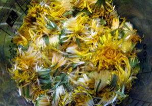 dandelion (mead)