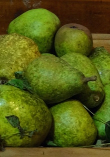 pears-blog-header