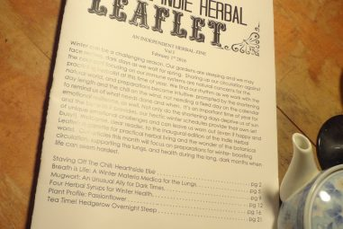 Things I Love: Herbal Zines and Honest Communication