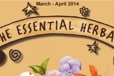 Pixie's Pocket featured in Essential Herbal Magazine