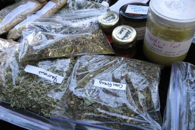 2011 Autumn Herb Exchange