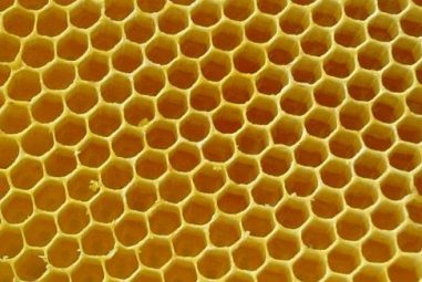 How to find your local beekeepers