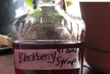 Three Recipes: Blackberry Bitters, Blackberry Cordial & Blackberry Simple Syrup