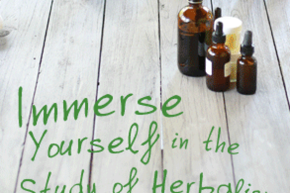 Back to School Special from the Herbal Academy!