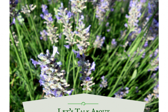 Let's Talk About: How to use Lavender