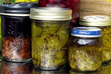 Let's Talk About Tinctures, Elixirs, and Cordials