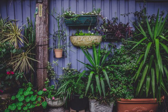 Size Doesn't Matter: Ways To Make Your Small Garden Super Impressive