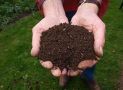 How to Make Cold Compost for Your Garden