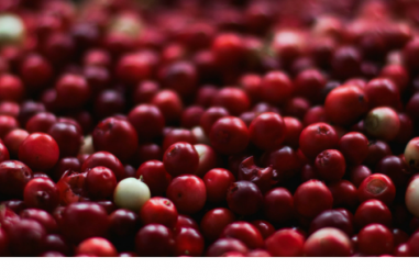 Recipe Box: Spiced Cranberry Cordial