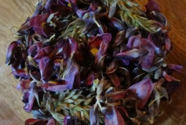 Kudzu Flower & Muscadine Wine