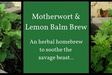 Motherwort and Lemon Balm Brew: One Gallon Recipe