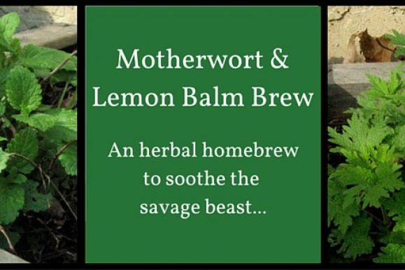Motherwort and Lemon Balm Brew: One Gallon Recipe