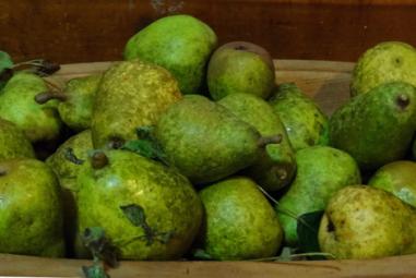 Pear Cordial: DIY Delicious Booze!