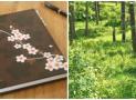 An Intentional Summer: A free Ecourse from Homespun Seasonal Living